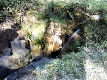 Yomer Wood Camping stream shower