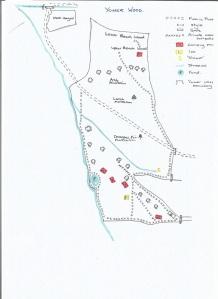 Yomer wood map 001