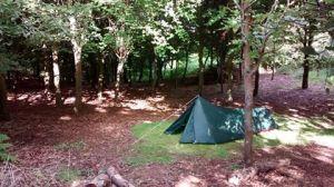 bryony camping