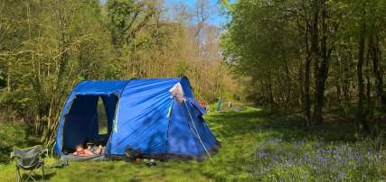 This tent needed the wheelbarrow.
